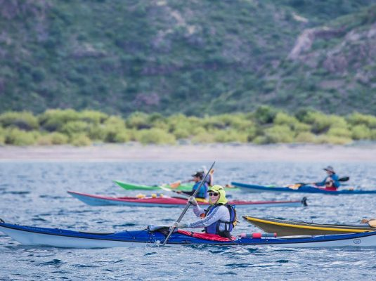 baja kayaking on the sea of cortez in search of whales