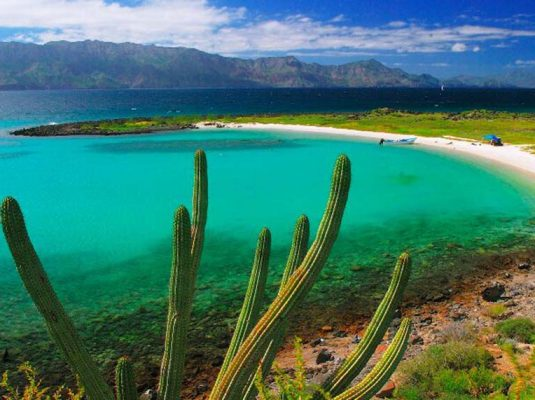 desert and sea of cortez views in baja mexico