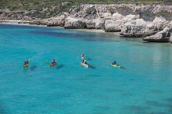 explore the coast and islands of baja