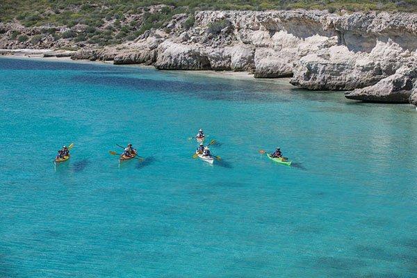 explore the coast and islands of baja