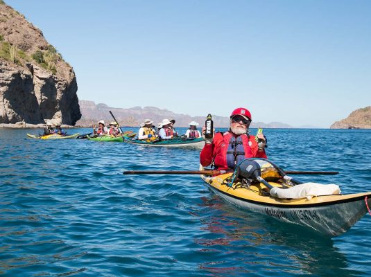 whale watching the sea of cortez by kayak